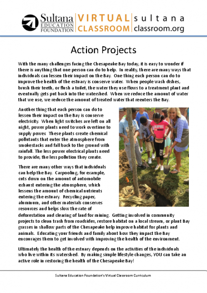Action Projects