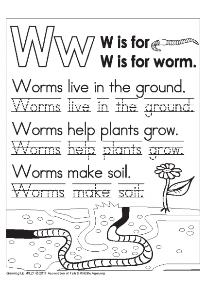 Growing up WILD Worm Lettering Page 3