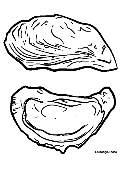 Oyster Shells Coloring Page