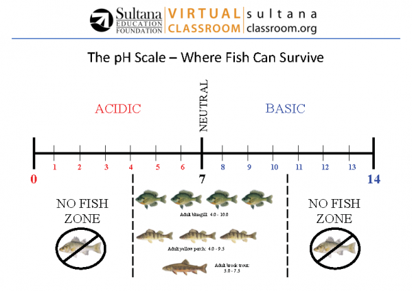 pH Scale Visual Aid 2